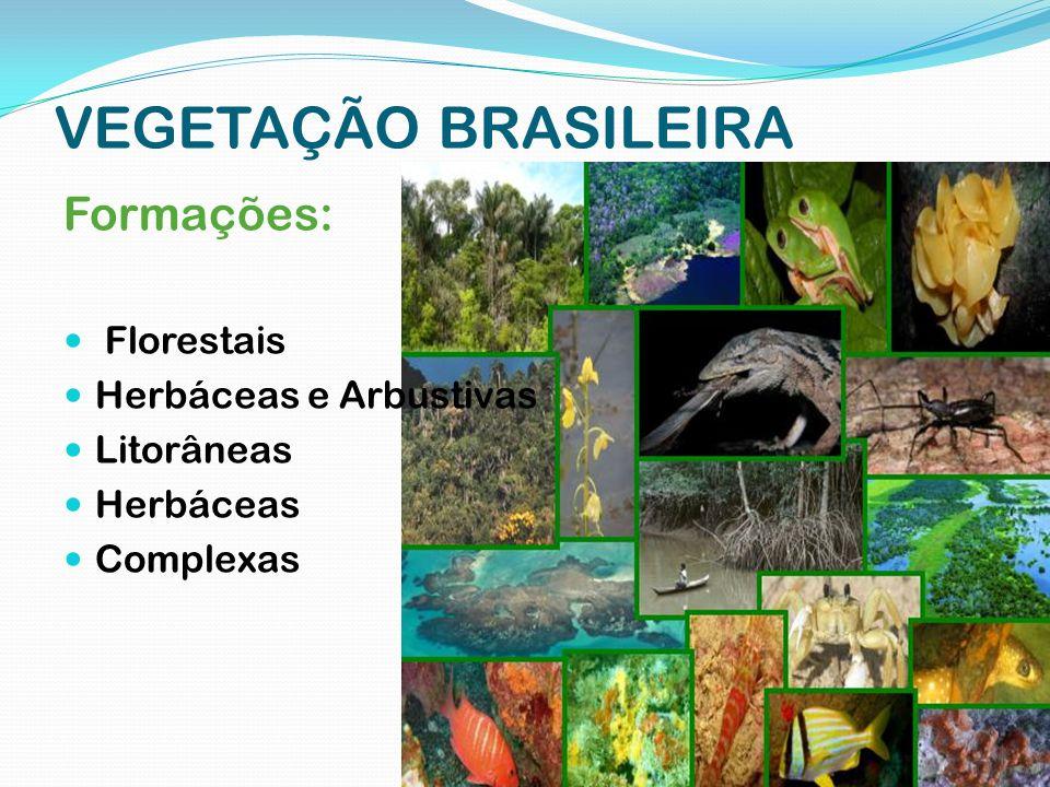 VEGETAÇÃO BRASILEIRA Formações: Florestais Herbáceas e Arbustivas