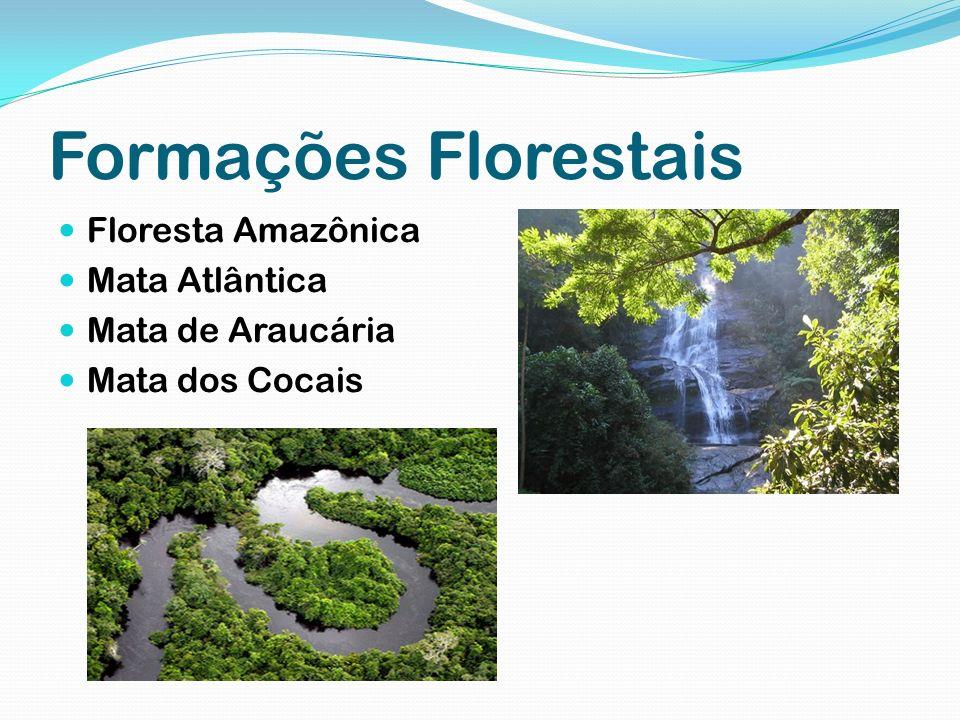 Formações Florestais Floresta Amazônica Mata Atlântica