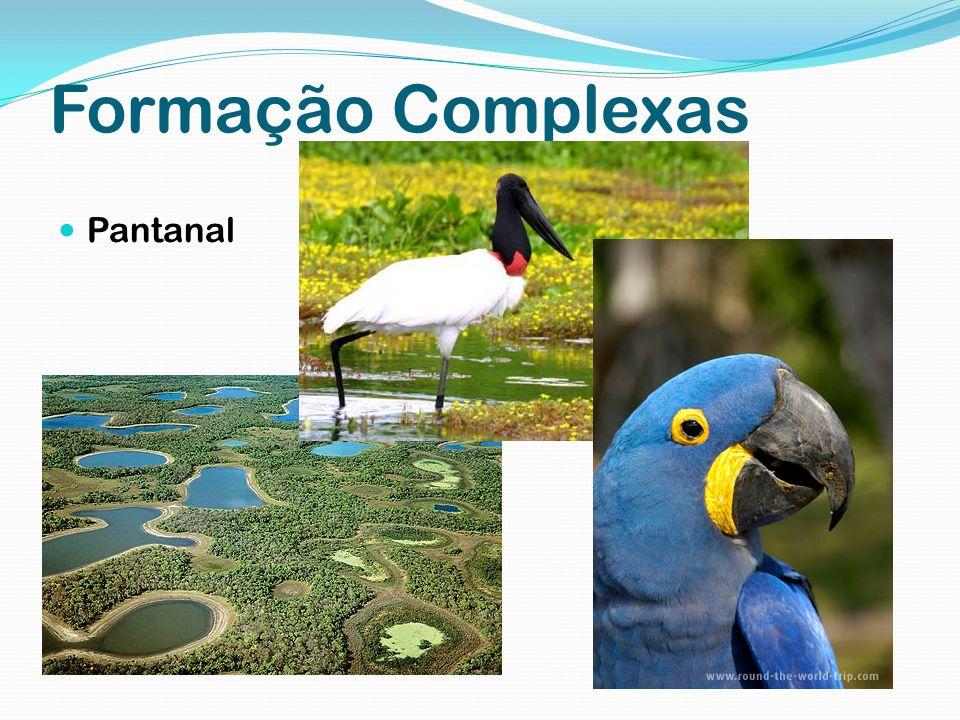 Formação Complexas Pantanal
