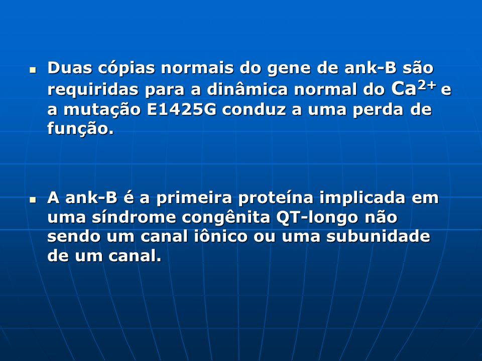 Duas cópias normais do gene de ank-B são requiridas para a dinâmica normal do Ca2+ e a mutação E1425G conduz a uma perda de função.