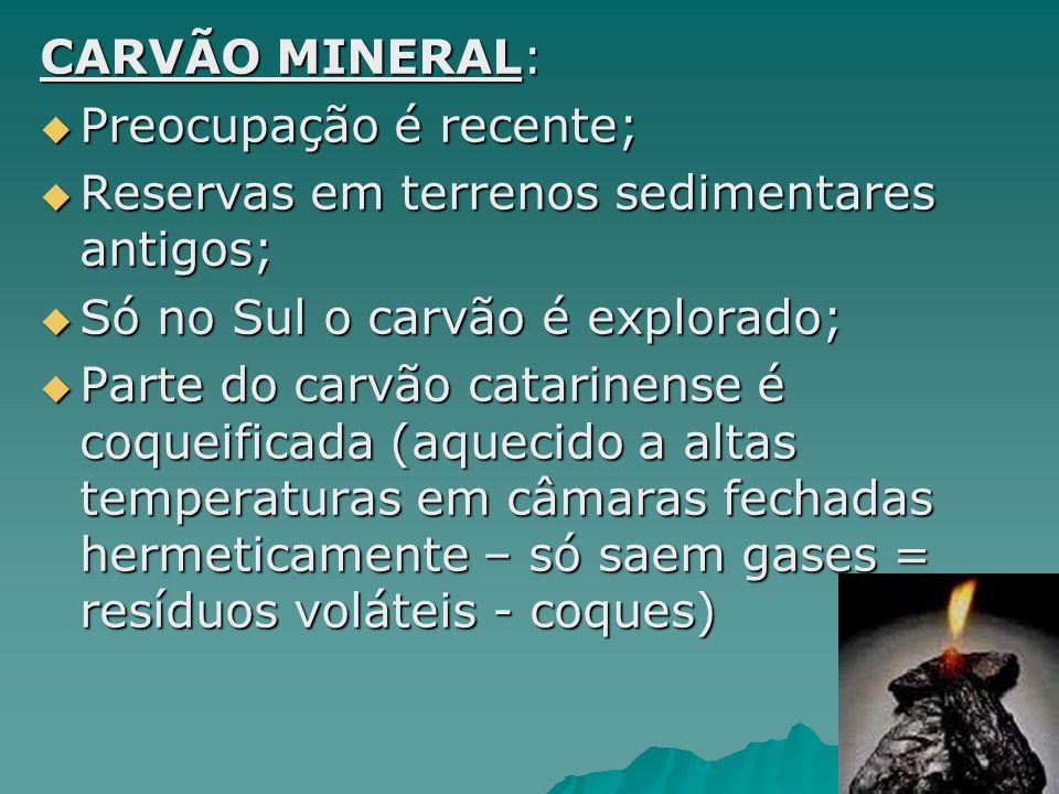 CARVÃO MINERAL: Preocupação é recente; Reservas em terrenos sedimentares antigos; Só no Sul o carvão é explorado;