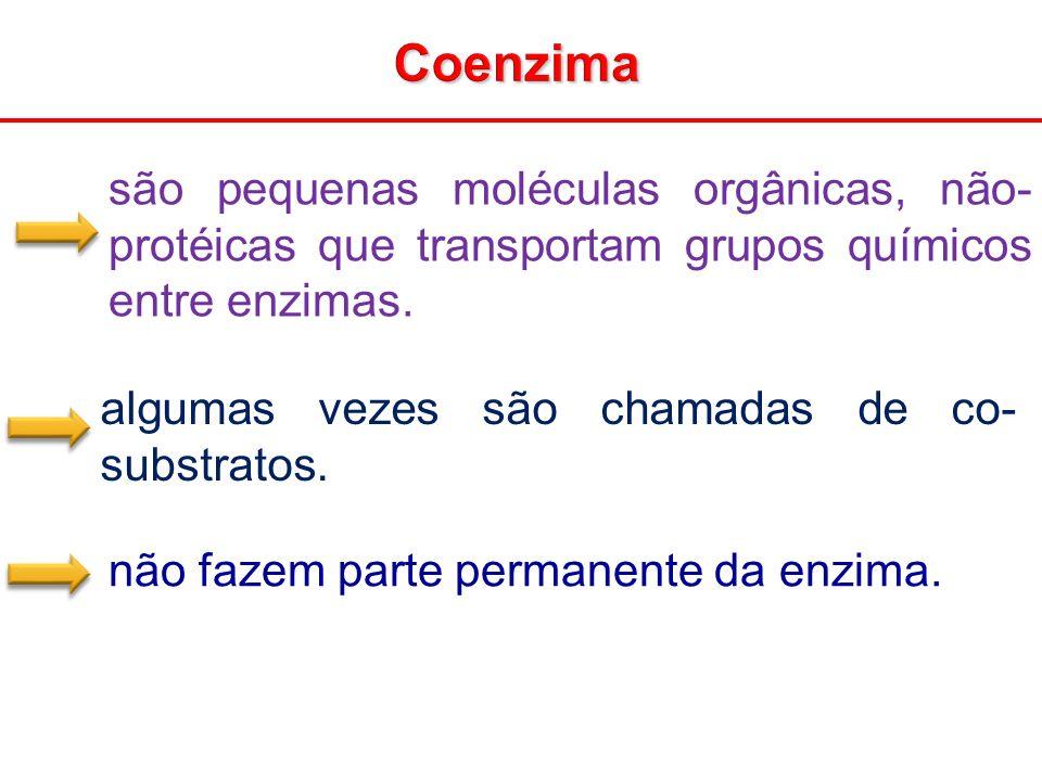 Coenzima são pequenas moléculas orgânicas, não- protéicas que transportam grupos químicos entre enzimas.