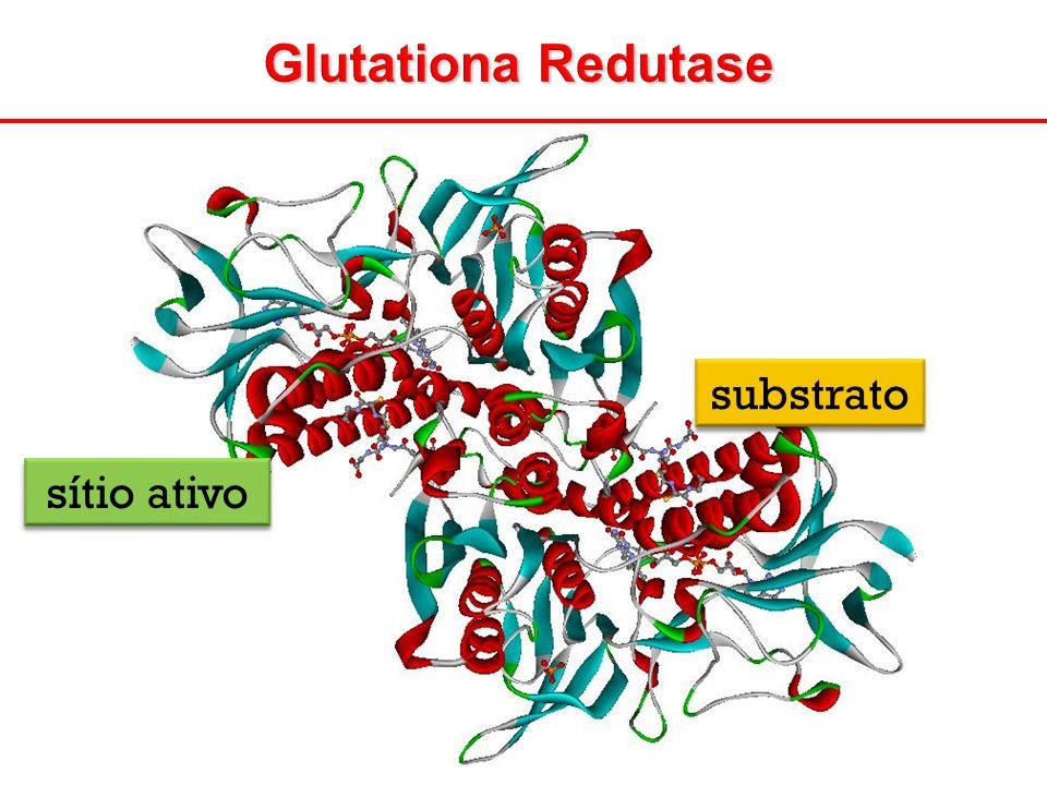 Glutationa Redutase substrato sítio ativo