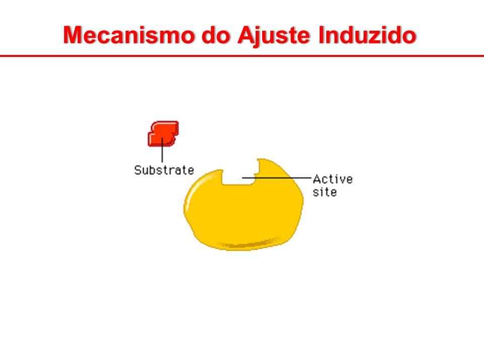 Mecanismo do Ajuste Induzido