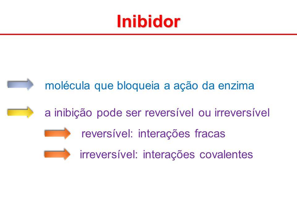Inibidor molécula que bloqueia a ação da enzima
