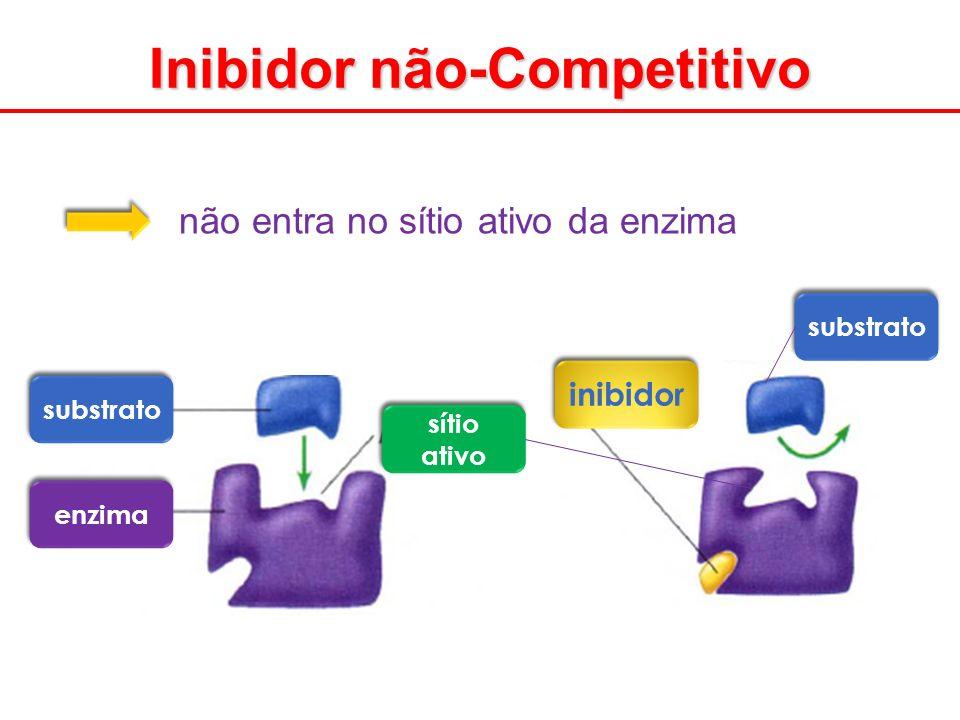 Inibidor não-Competitivo