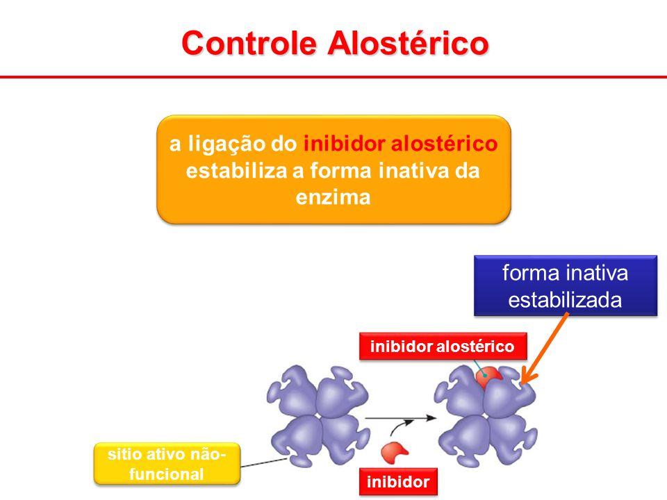 Controle Alostérico a ligação do inibidor alostérico estabiliza a forma inativa da enzima. forma inativa estabilizada.
