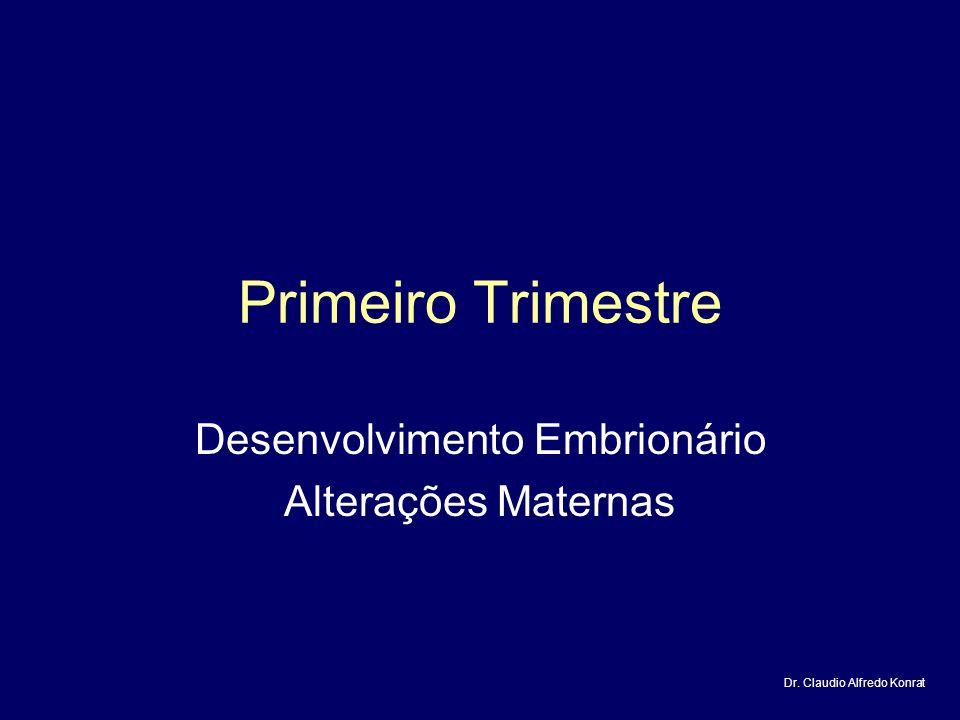 Desenvolvimento Embrionário Alterações Maternas