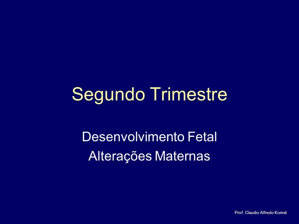 Desenvolvimento Fetal Alterações Maternas