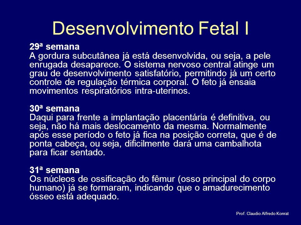 Desenvolvimento Fetal I