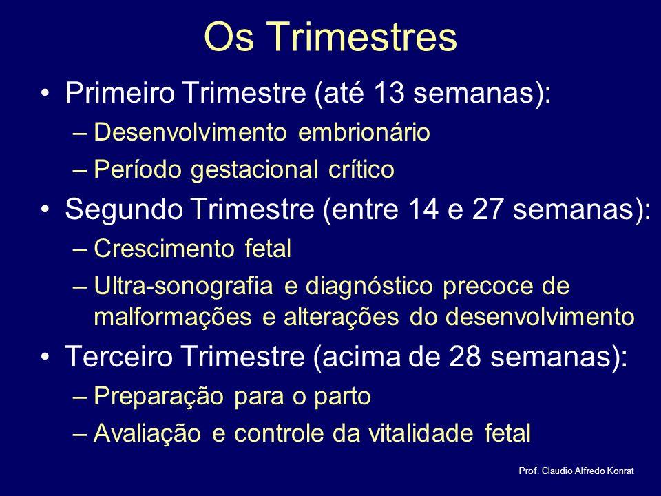 Os Trimestres Primeiro Trimestre (até 13 semanas):