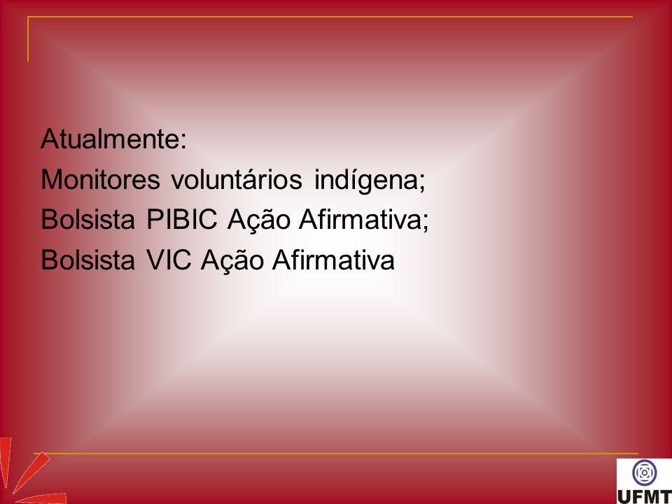 Atualmente:Monitores voluntários indígena; Bolsista PIBIC Ação Afirmativa; Bolsista VIC Ação Afirmativa.