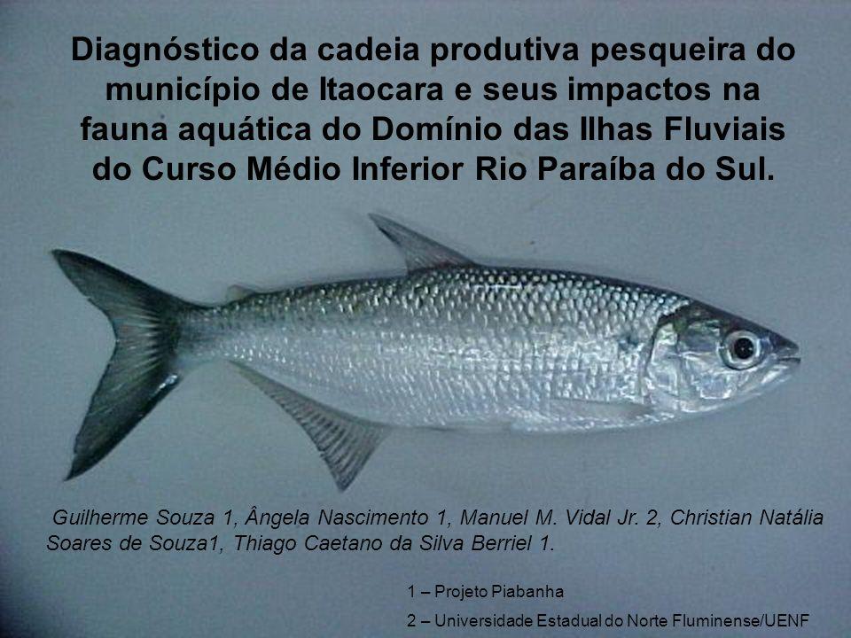 Diagnóstico da cadeia produtiva pesqueira do município de Itaocara e seus impactos na fauna aquática do Domínio das Ilhas Fluviais do Curso Médio Inferior Rio Paraíba do Sul.