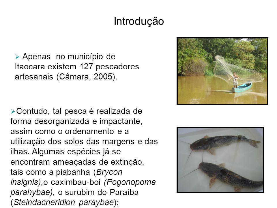 Introdução Apenas no município de Itaocara existem 127 pescadores artesanais (Câmara, 2005).