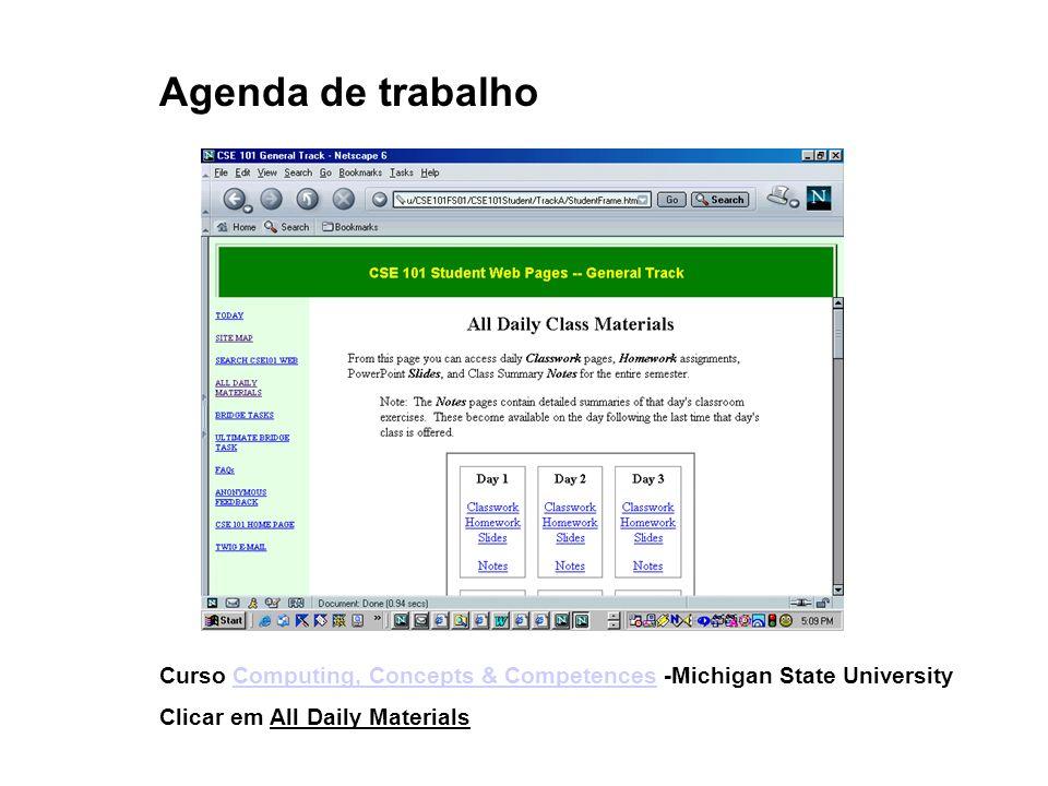 Agenda de trabalho Curso Computing, Concepts & Competences -Michigan State University.