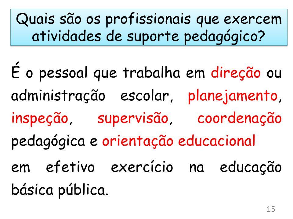 Quais são os profissionais que exercem atividades de suporte pedagógico