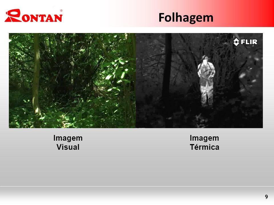 Folhagem Imagem Visual Imagem Térmica