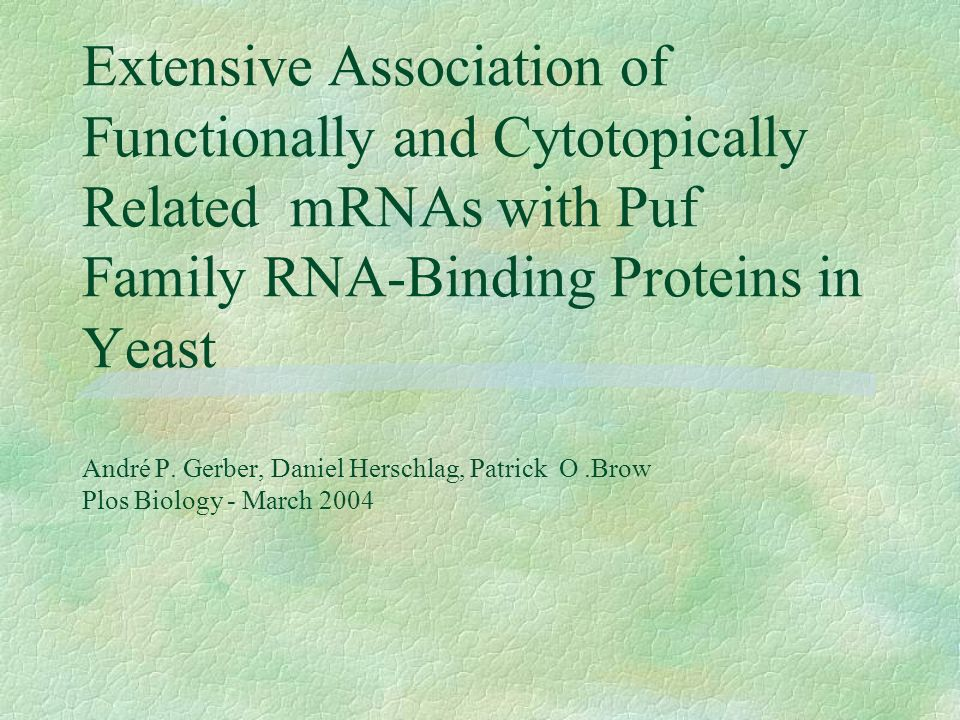 Extensive Association of Functionally and Cytotopically Related mRNAs with Puf Family RNA-Binding Proteins in Yeast André P.
