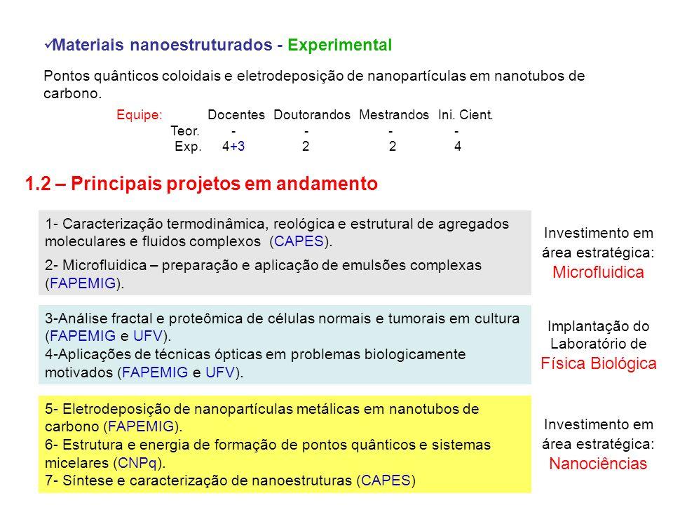 1.2 – Principais projetos em andamento