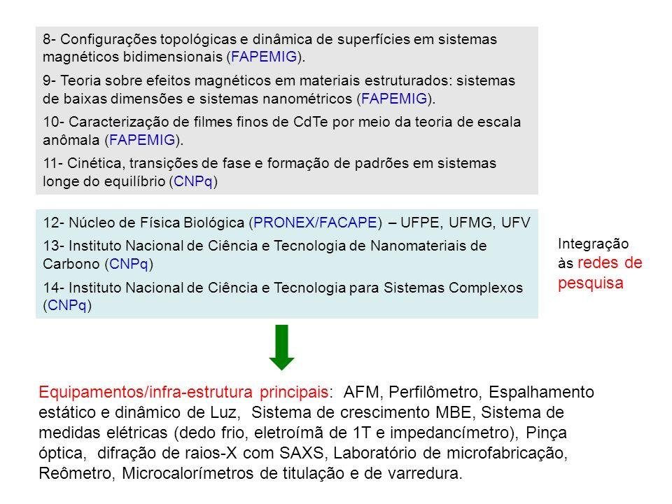 8- Configurações topológicas e dinâmica de superfícies em sistemas magnéticos bidimensionais (FAPEMIG).