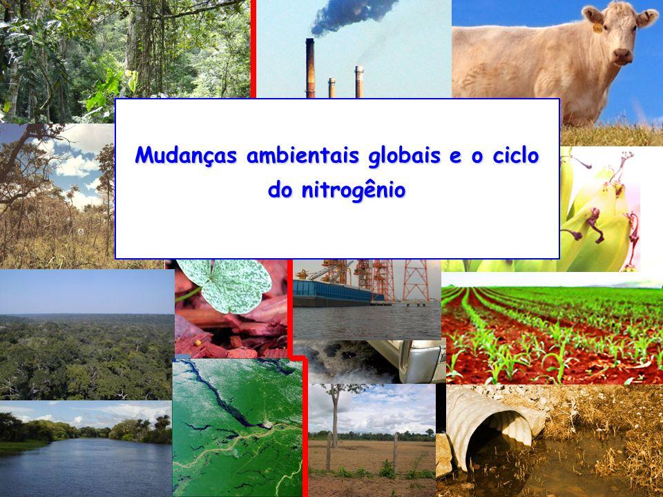 Mudanças ambientais globais e o ciclo do nitrogênio