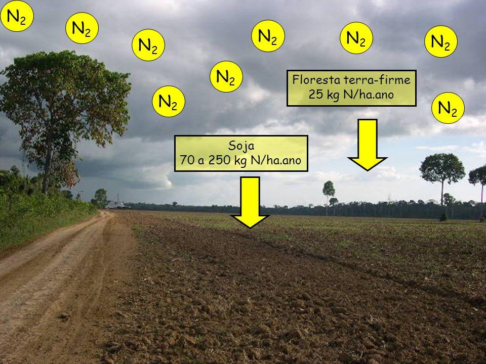 N2 N2 N2 N2 N2 N2 N2 N2 N2 Floresta terra-firme 25 kg N/ha.ano Soja