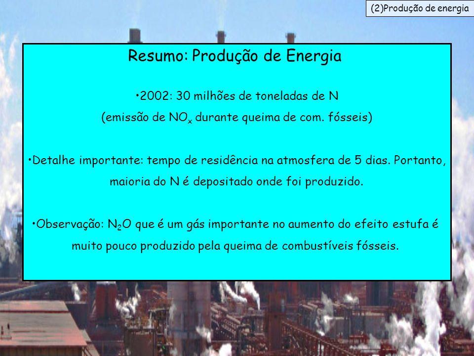 Resumo: Produção de Energia