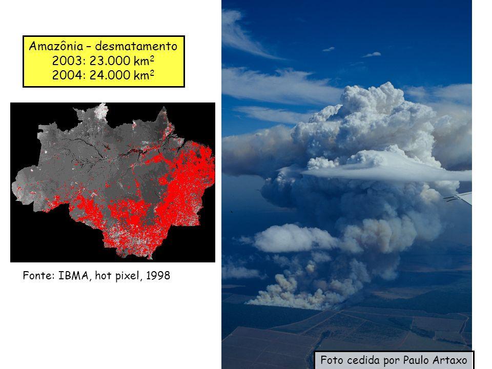 Amazônia – desmatamento 2003: 23.000 km2 2004: 24.000 km2