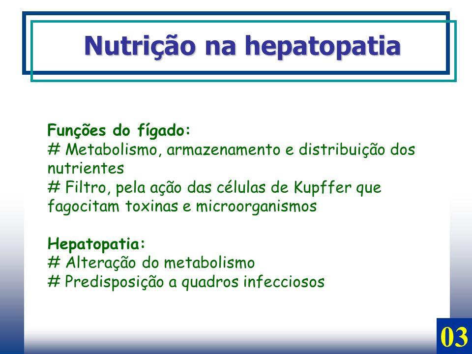 03 Nutrição na hepatopatia Funções do fígado: