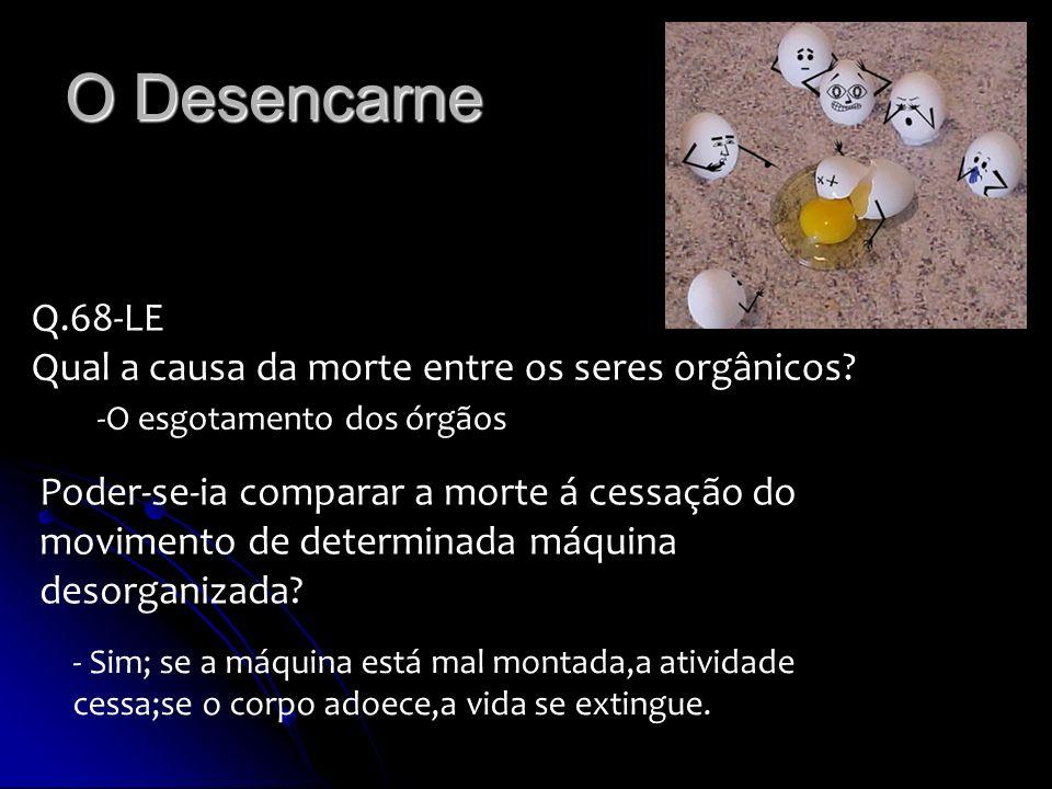O Desencarne Q.68-LE Qual a causa da morte entre os seres orgânicos