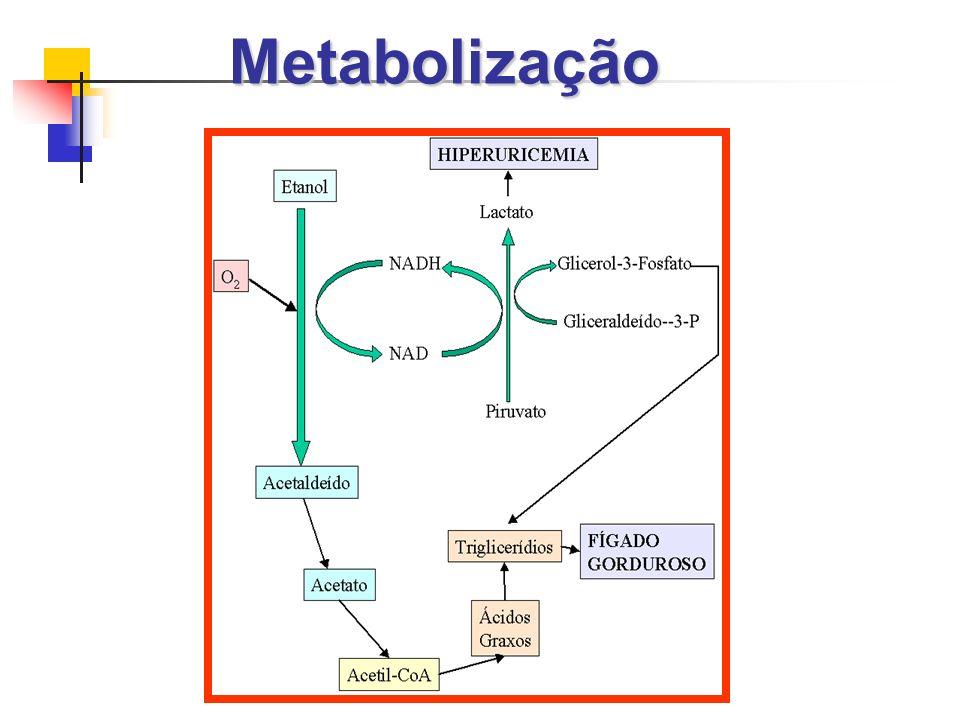 Metabolização