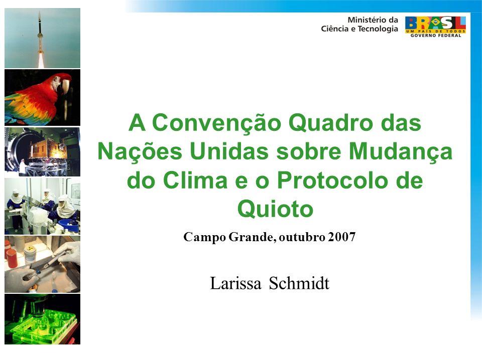 A Convenção Quadro das Nações Unidas sobre Mudança do Clima e o Protocolo de Quioto