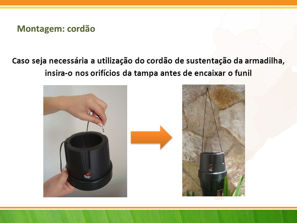Montagem: cordão Caso seja necessária a utilização do cordão de sustentação da armadilha, insira-o nos orifícios da tampa antes de encaixar o funil.