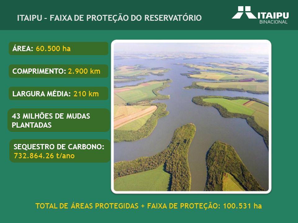 TOTAL DE ÁREAS PROTEGIDAS + FAIXA DE PROTEÇÃO: 100.531 ha