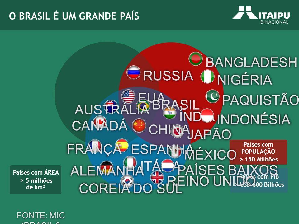 FONTE: MIC (BRASIL & PARCEIROS 2005)