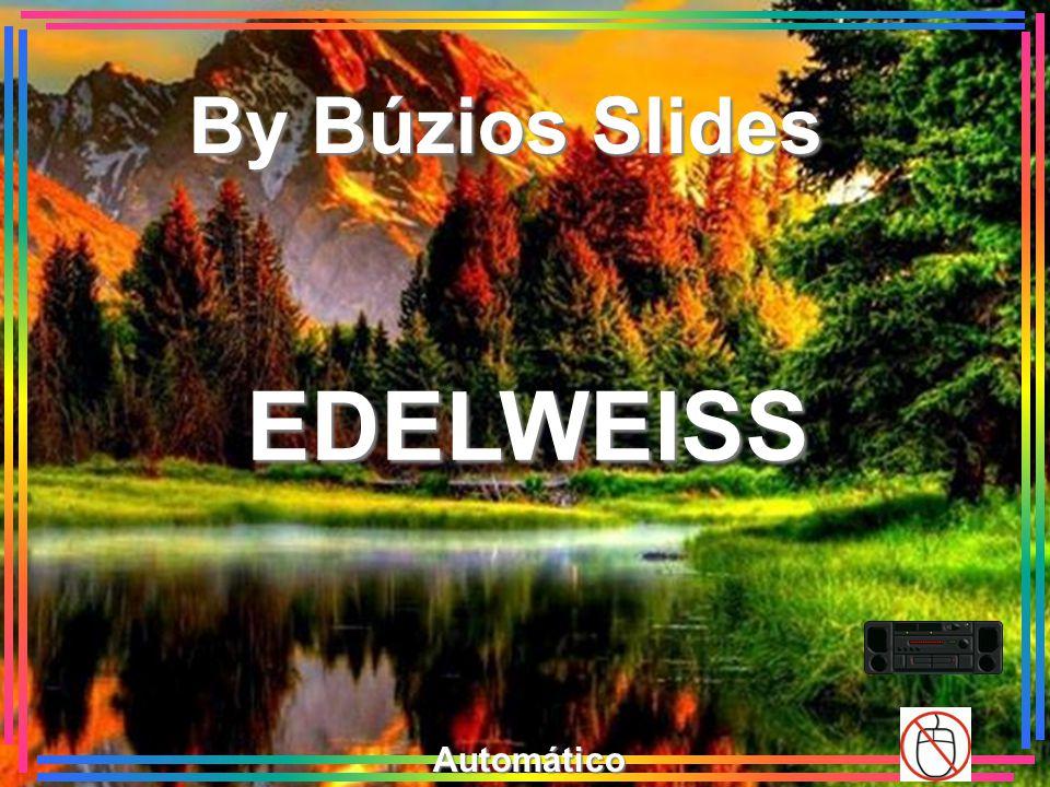 EDELWEISS By Búzios Slides Automático