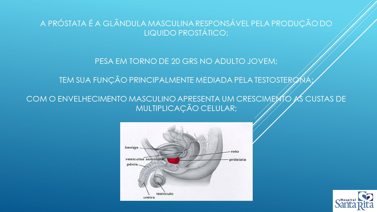 A próstata é a glândula masculina responsável pela produção do liquido prostático; Pesa em torno de 20 grs no adulto jovem; Tem Sua função principalmente mediada pela testosterona; com o envelhecimento masculino apresenta um crescimento as custas de multiplicação celular;