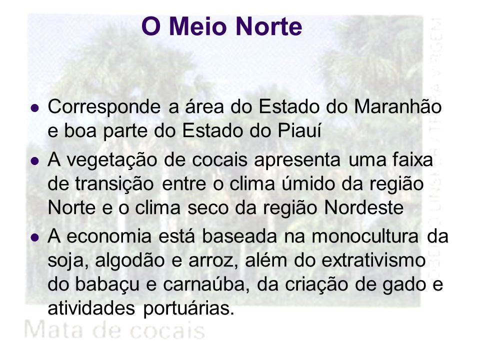 O Meio Norte Corresponde a área do Estado do Maranhão e boa parte do Estado do Piauí.