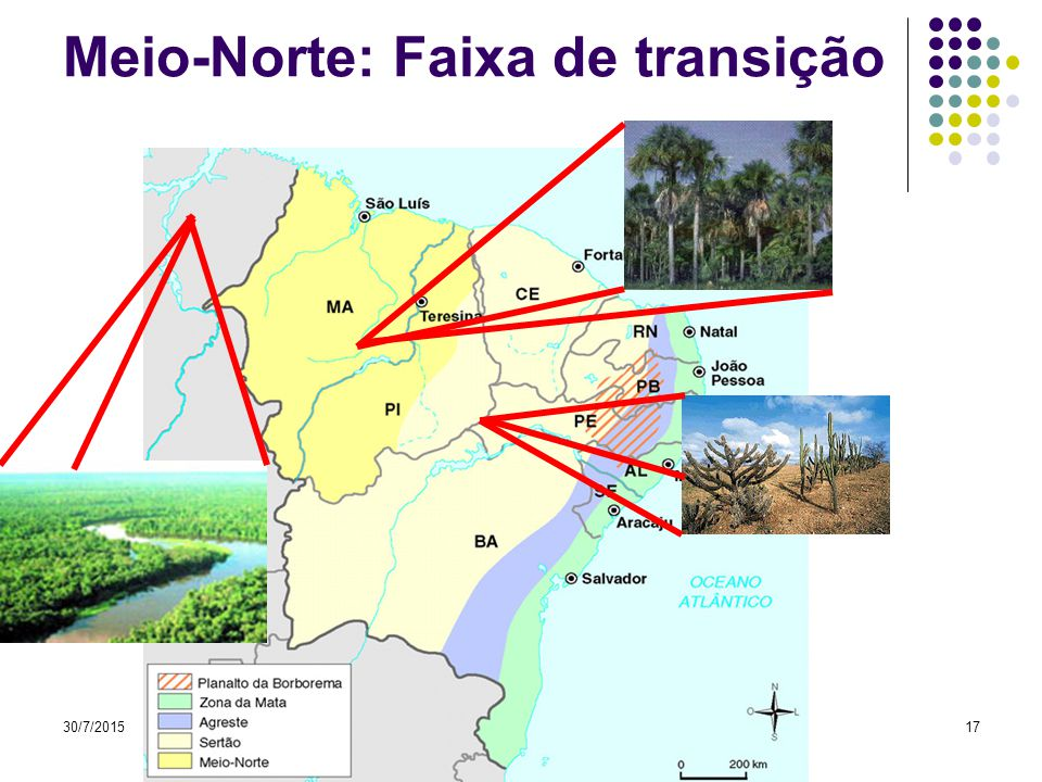 Meio-Norte: Faixa de transição