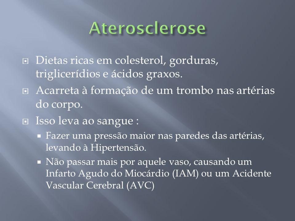 Aterosclerose Dietas ricas em colesterol, gorduras, triglicerídios e ácidos graxos. Acarreta à formação de um trombo nas artérias do corpo.
