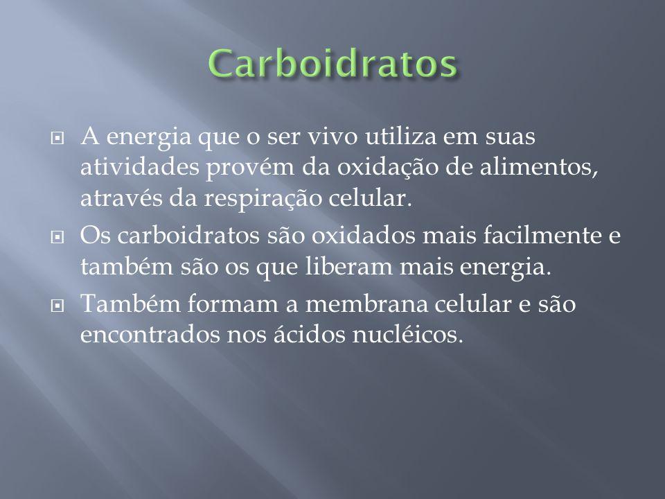Carboidratos A energia que o ser vivo utiliza em suas atividades provém da oxidação de alimentos, através da respiração celular.