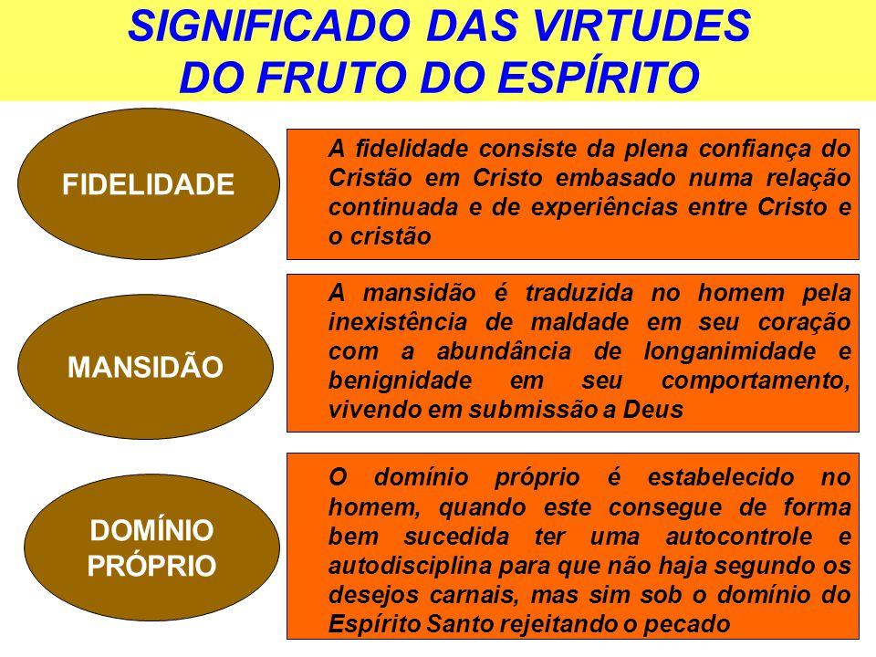 Top LIÇÃO 13 A MULTIFORME SABEDORIA DE DEUS - ppt video online carregar PE89