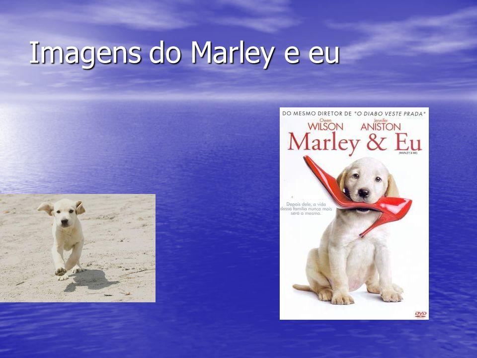 Imagens do Marley e eu