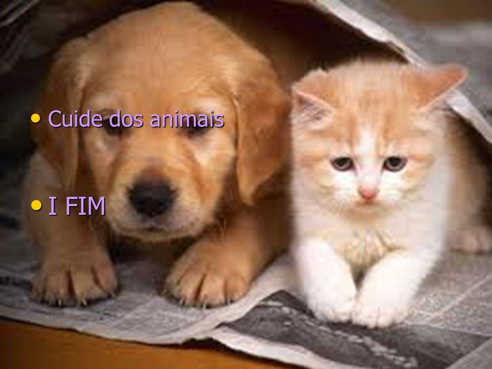 Cuide dos animais I FIM