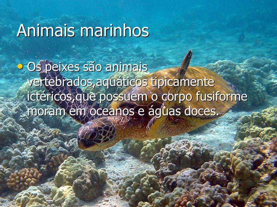 Animais marinhos Os peixes são animais vertebrados,aquáticos tipicamente ictéricos,que possuem o corpo fusiforme moram em oceanos e águas doces.