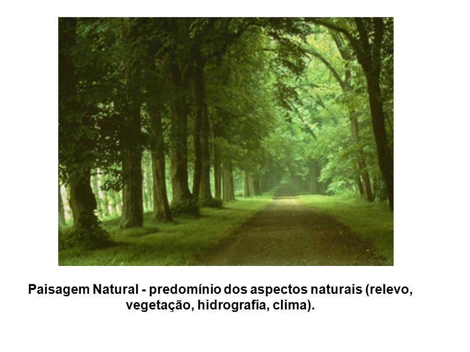 Paisagem Natural - predomínio dos aspectos naturais (relevo, vegetação, hidrografia, clima).
