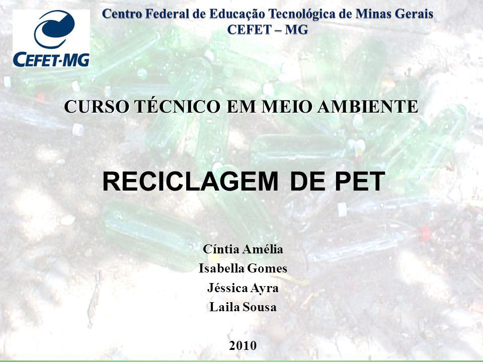 CURSO TÉCNICO EM MEIO AMBIENTE ppt carregar -> Curso Tecnico Em Decoração De Ambientes