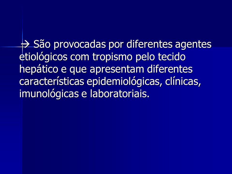  São provocadas por diferentes agentes etiológicos com tropismo pelo tecido hepático e que apresentam diferentes características epidemiológicas, clínicas, imunológicas e laboratoriais.