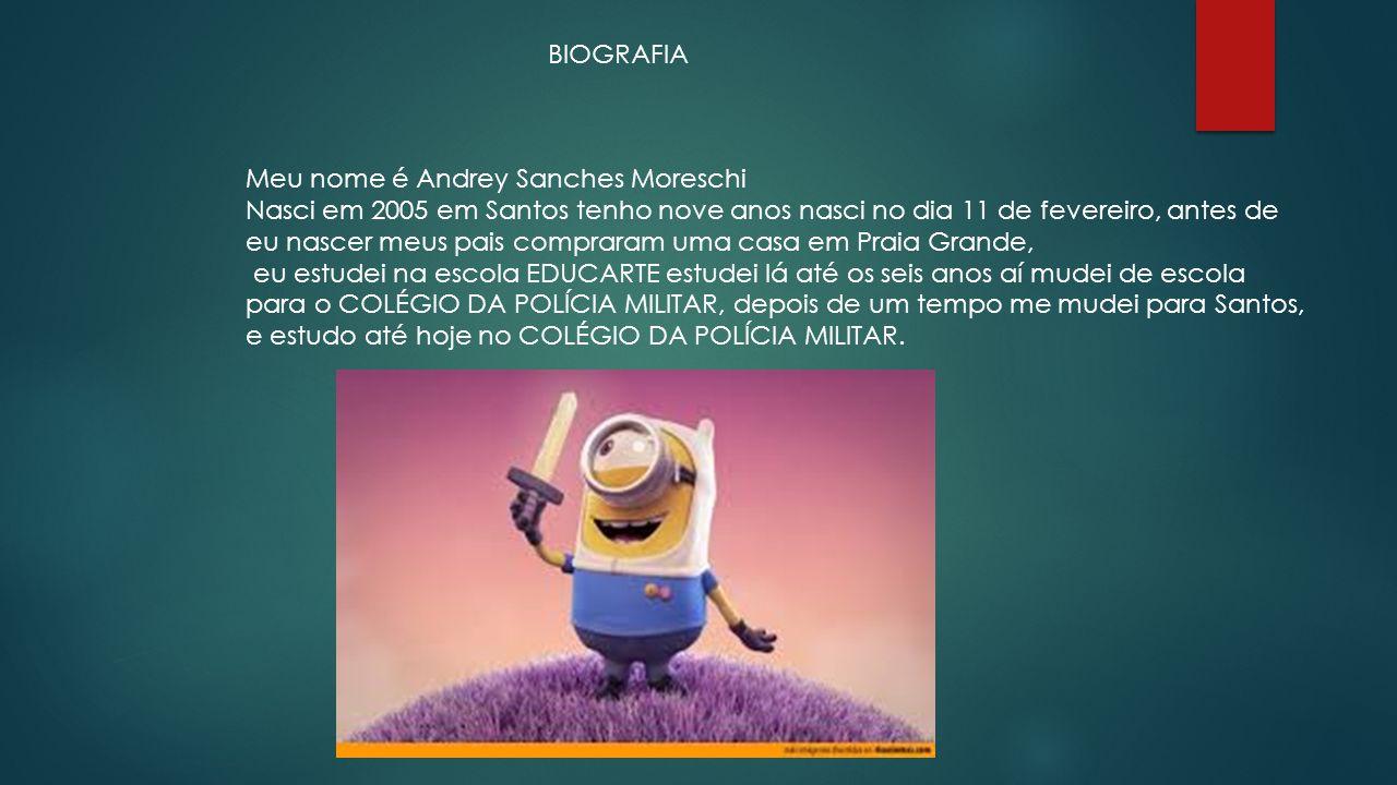 BIOGRAFIA Meu nome é Andrey Sanches Moreschi.