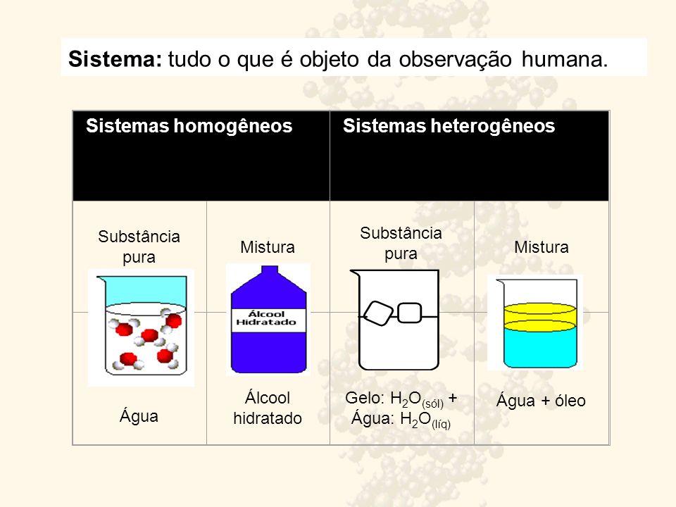 Sistema: tudo o que é objeto da observação humana.